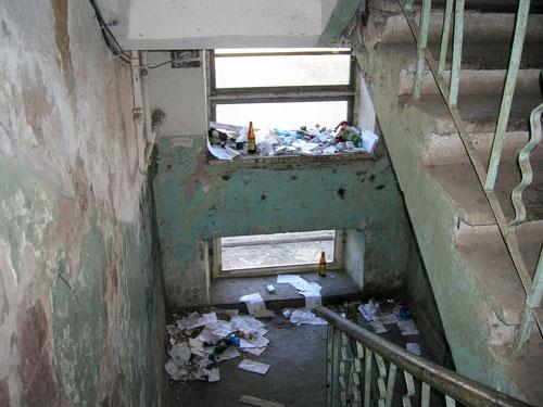 Уничтожение блох многоквартирный дом